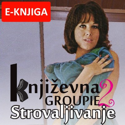 Književna Groupie 2 eBook