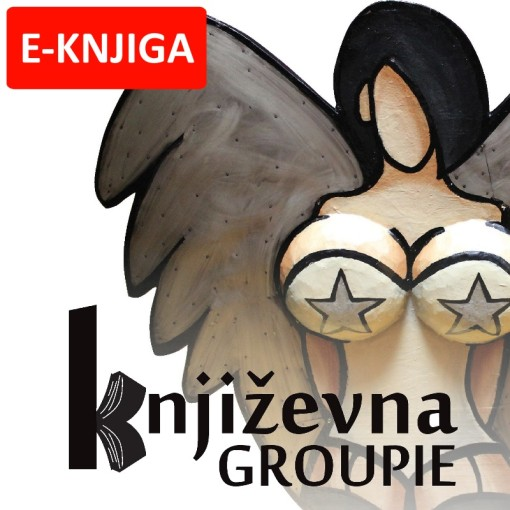 Književna Groupie eBook